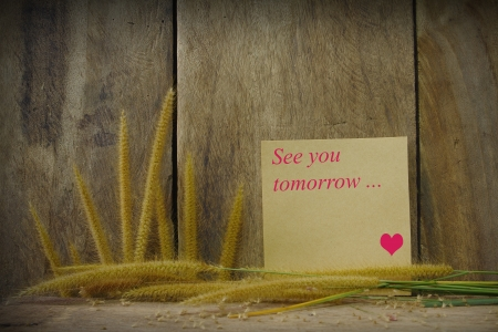 Still life with see you word wrote on notepad  and foxtail grass on wooden background Stock Photo