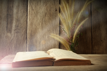 Still life flower foxtail weed and old book  in morning light on wooden background photo