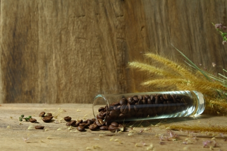 Still life roasted coffee beans in glass vase with foxtail weed on wooden background photo