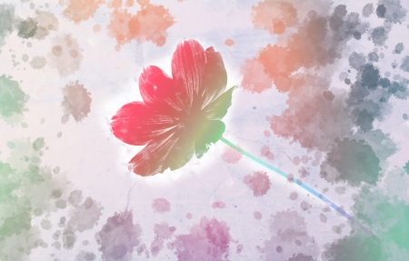 Cosmos flower with watercolor splash on grunge paper b photo