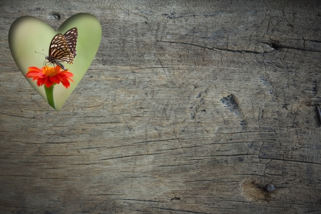 feeding through: Hole of  heart shape with Zinia flower and butterfly on grunge wood background