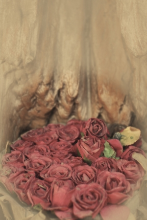 Old paper red roses on grunge wood teak shelf in vintage style photo