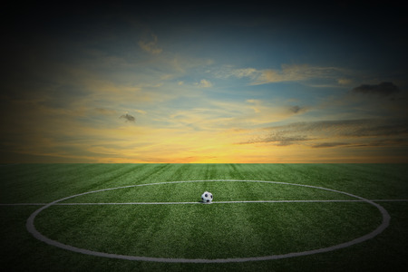 Soccer green grass field at sunset photo