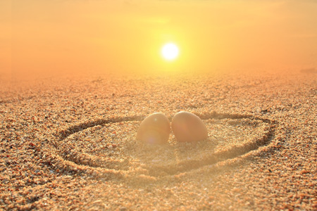 Couple eggs setting on bech with golden sunrise background photo