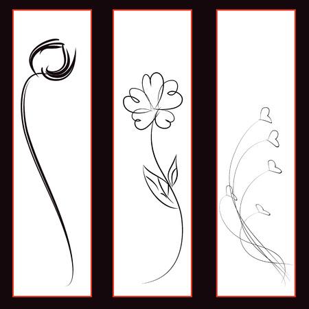 rose blanche: Noir et blanc, rose, fleur ensemble