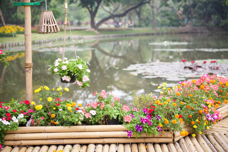 flower garden path: Beautiful flower garden with bamboo path over lotus pond
