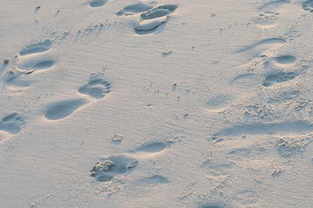left behind: Footprints on the beach left behind
