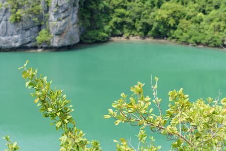 Landscape Bird Eye View of Angthong National Marine Park, Ko samui,Thailand
