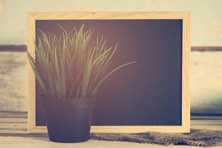 grune: Blackboard and green grass pot with grune wooden background