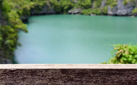 wooden floors: Wood plank over green lake with blurred green tree background