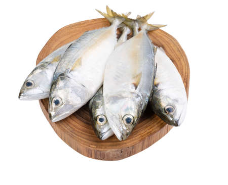 Fresh Mackerel fish on wooden chopping board isolated on white background with clipping path Foto de archivo