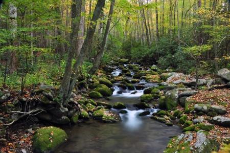 Water stroomt in een bergbeek Stockfoto