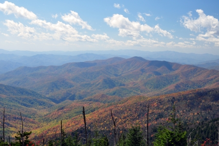 A view in the Smokey Mountains  photo
