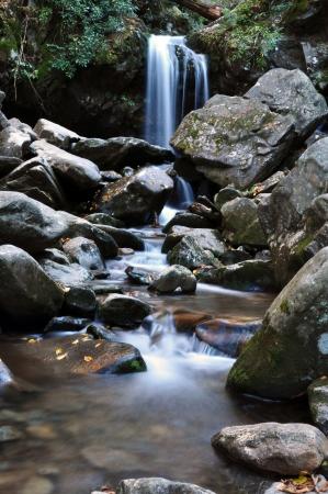 crick: Grotto Falls, vicino a Gatlinburg, Tennessee