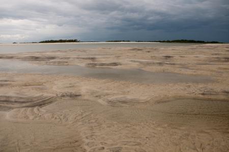tybee island: Low tide on Tybee Island, Georgia
