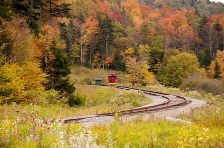 west virginia trees: An old caboose serves as lodging in the West Virginia wilderness