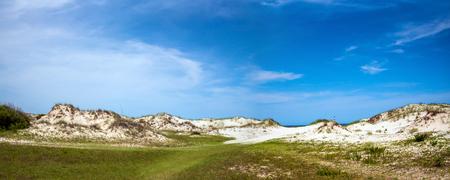 Sand dunes at Cumberland Island National Seashore. 版權商用圖片