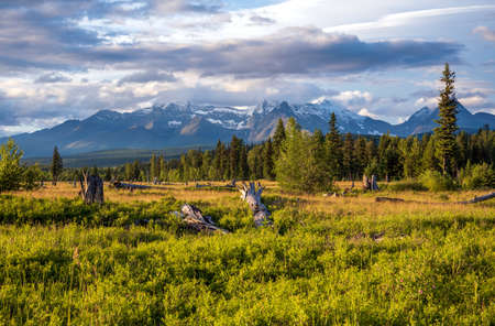 Late afternoon in Glacier National Park with snow capped peaks. Stock Photo