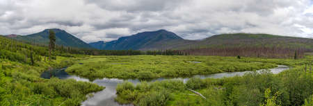 Rogers Meadow in Glacier National Park Stock Photo