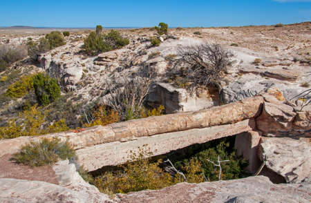 Agate Bridge in Petrified Forest National Park, Arizona.