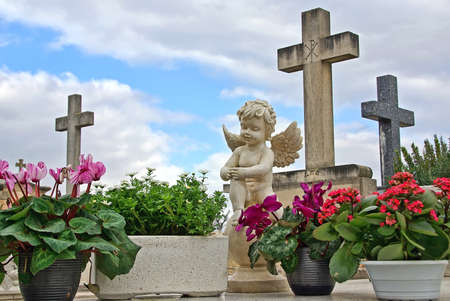 Statue of an angel boy located in a cemetery photo
