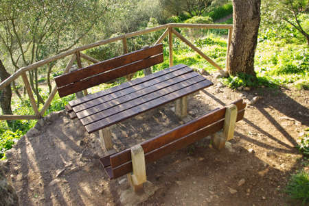 Picnic Area in the forest photo