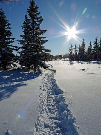 A trail crosses a a snowy field