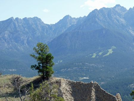 A tree stands on a ridge in front of mountains.