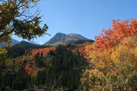Fall Colors above Tibblefork Reservoir Banco de Imagens
