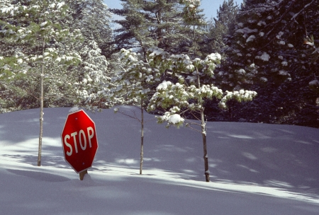 Deep snow in Northern Michigan buries a Stop Sign, making it superfluous  Stock Photo