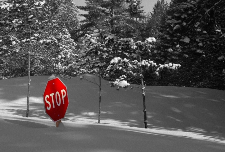 Heavy snowfall makes a roadside Stop sign superfluous in Northern Michigan