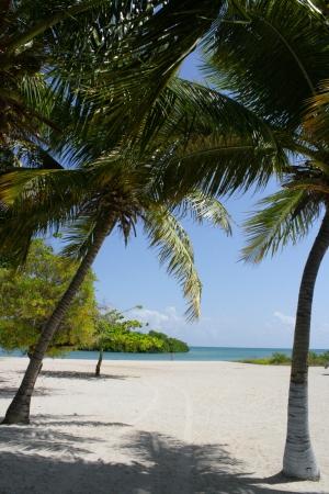 Blue water meets white sand on the beach at Barahona, Santo Domingo  Stock Photo