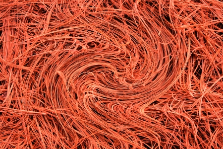An abstract rendiering of dry white pine needles creates an unusual background pattern