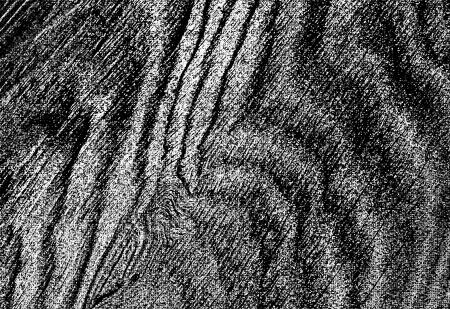 Una secci�n de madera resistido forma abstracta, patr�n ondulado
