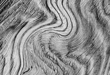A twirled section of weathered wood forms an abstract, wavy pattern  Stock Photo