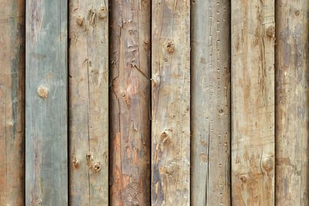 disposed: Abstract grunge wood texture, vertically disposed.