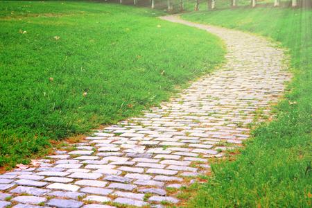 Cobble steenweg in het park en wat groen gras naast. Lege kopie ruimte voor de tekst van de uitgever. Zonlicht. Stockfoto