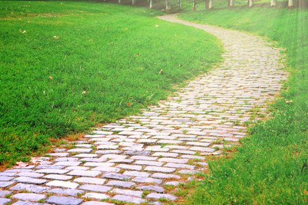 Cobble stone walk way in the park and some green grass beside. Empty copy space for Publisher's text. Sun light.