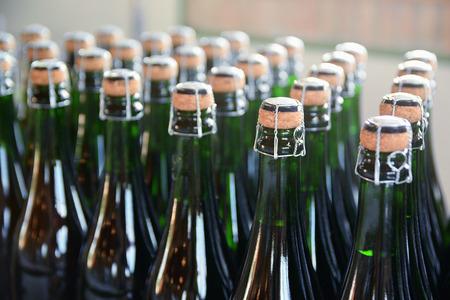 Sommige champagneflessen in een Catalaanse cavafabriek. Stockfoto