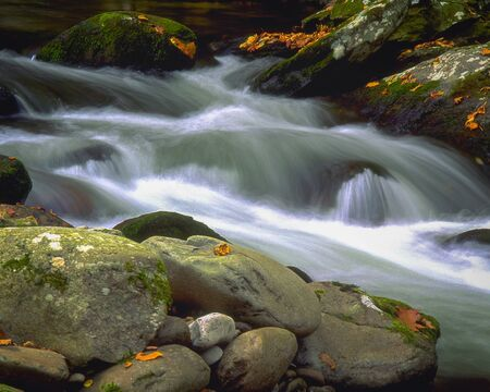 Little River at Elkmont Stock fotó