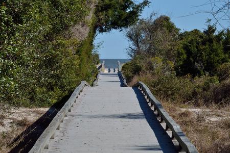 Boardwalk to the ocean thru the woods