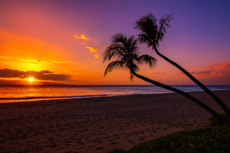 Hawaiian Sunset 免版税图像