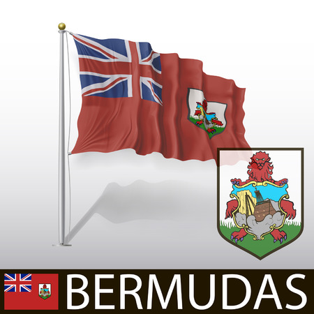 hamilton: Flag of Bermudas Illustration