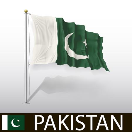 pakistani pakistan: Flag of Pakistan