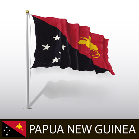Nuova Guinea: Bandiera della Papua Nuova Guinea Vettoriali