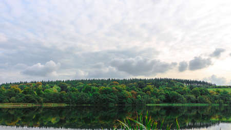 An amazing lake with the reflection of a forest in its surface with a cloudy sky