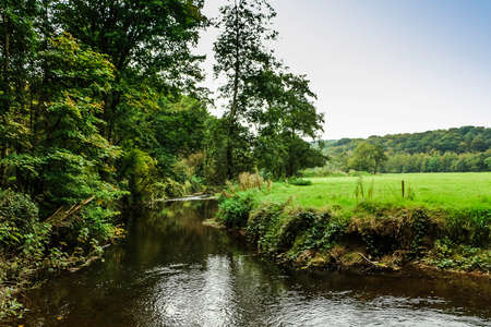 A beautiful scene of a river between trees, grass and amazing green foliage