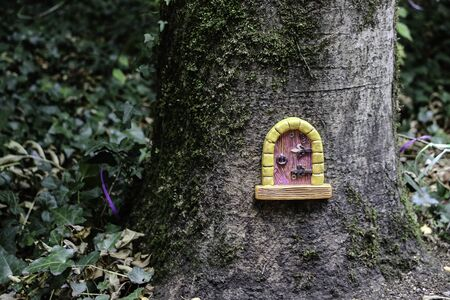 Small door in a tree trunk, emulating a fairy house front door