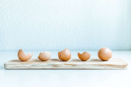 Brown chicken egg and eggshells over a wooden board in a white background with natural light