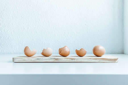 Brown chicken egg and eggshells over a wooden board in a white desk with natural light